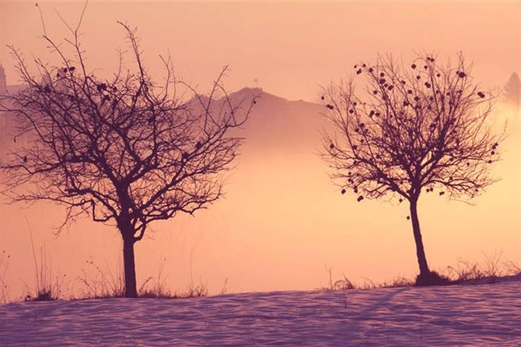Castlèt Rosè - Rosa come un'alba che diventerà un giorno.