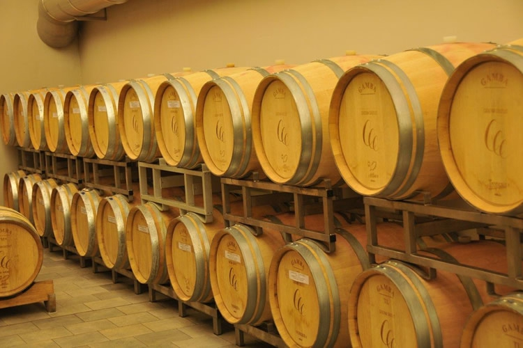 The barrels that cradle the ageing of the wine.